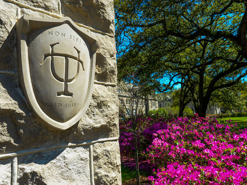 Tulane Shield in Gibson's Cowen Circle